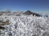 扇ヶ鼻の樹氷 遠くに九住山等を望む