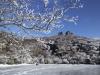 くじゅう大船山御池の樹氷と氷結
